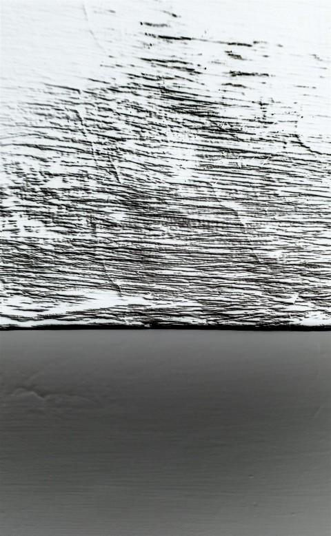 IMG_4454SA Iceberg